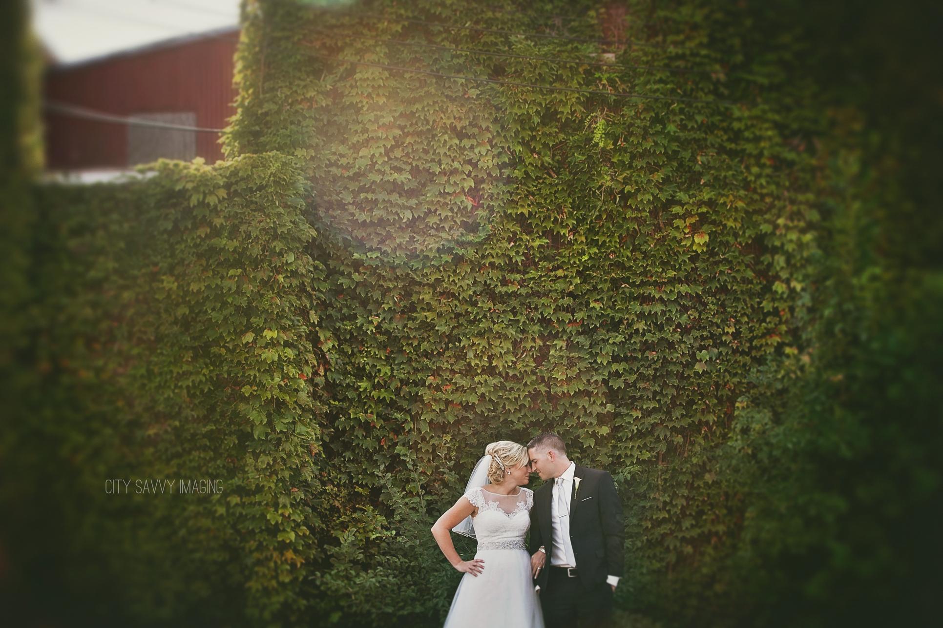 Nick Morgan S Quad Cities Wedding St Pius Rock Island Il